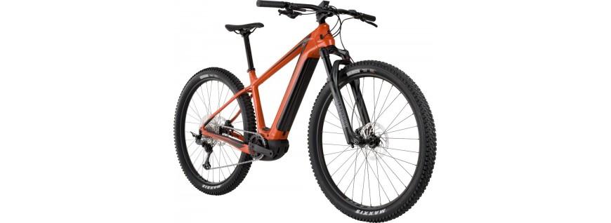 E-Bike Rígidas