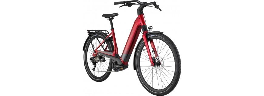 E-Bike de Trekking